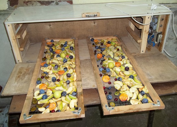 Как за полчаса сделать сушилку для овощей и фруктов